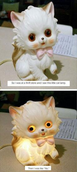 One Of The Most Terrifying Things Ever Found lol: Lamps, Cats, Terrifying Things, Hahahaha No, So Funny, Crazy Cat Lady