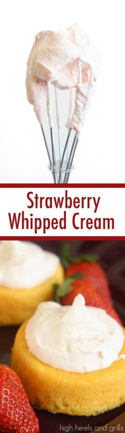 Http Www Food Com Recipe Whipped Cream Frosting