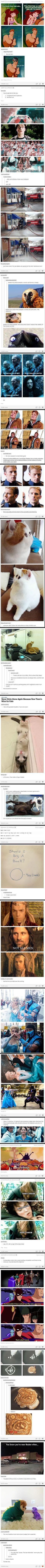 the best of tumblr - Funny Pictures - Funny Photos - Funny Images - Funny Pics