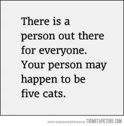 The sad truth of my life.: Cats, Quotes, Catlady, Funny Stuff, Crazy Cat, Funnies, Dog, Cat Lady