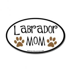 Two labradors. If someone could find this in a car sticker I would pay them!: Dogs, Lab Mom, Chocolate Labs, Labrador Mom, Friend, Black Labs, Black Labrador