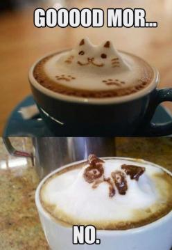 Waking up on a weekend...: Cats, Grumpycat, Coffee, Funny Stuff, Humor, Grumpy Cat, Morning, Funnie