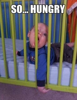 a-hungry-baby: Funny Pictures, Quote, Funny Stuff, Humor, Funnies, Funny Baby, Funny Babies, Kid