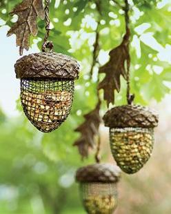 acorn bird feeders: Idea, Acorn Feeder, Birdhouse, Bird Feeders, Outdoor, Bird Houses, Garden, Birds, Acorn Birdfeeders