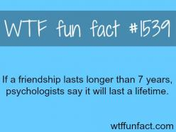 For those friends you haven't spoken to in a year...or four and you can pick up right where you left off....: Wtf Facts, Best Friends, Friendship, Bffs, Fun Facts, Bff Quotes For Girls Funny, Wtf Fun, Funfacts, Random Facts