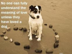 No one can fully understand the meaning of love unless they have loved a dog....  amen!: Animals, Heart, Dogs, Pet, Doggies, So True, Meaning Of Love, Fully Understand, Friend