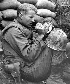 Sergeant Frank Praytor looks after a two-week old kitten during the height of the Korean War.: Photos, Cats, Hero, Soldiers, Sergeant Frank, Kittens, War, Animal