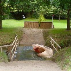 Shark Head Horse Jump: Horses, Cross Country Jumps Ideas, Horse Cross Country, Cross Country Horse, Crosses, Horse Jumps, Cross Country Course, Sharks