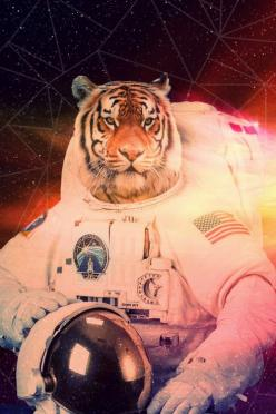 Space Tiger – Buy Me Brunch: Spaces, Cat, Space Tiger, Art Prints, Astronaut Tiger, Tigers, Animal