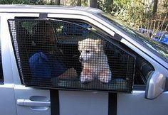 With this pet window guard, your dog won't be able to leap out the window.   28 Ingenious Things For Your Dog You Had No Idea You Needed: Doggie, Idea, Dogs, Window, Pets, Furbabies, Dog Stuff, Animal