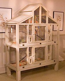 I'm going to order the plans for this cage! It's fabulous! I wish I could find them for free but either way I'm getting them! Canary cage- Martha Stewart: Homemade Bird Cage, Pets, Birdcages, Pet Bird Cage, Canary Cage, Bird Cages, Canary Bird