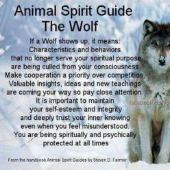Wolf spirit guide: Spirit Guides Totems, Quotes, Animal Spirit Guides, Animals Wolves, Guides Animals, Animals Spirit, Guide Wolf