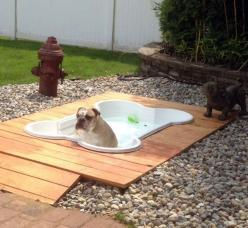 b/c we have a deck and hot tub, it's only fair that the dogs have their own deck and pool. Going to make it big enough to have the sand box a part of the deck.: Idea, Dogs, Pets, Outdoor, Backyard, Pools, Doggie Pool, Animal