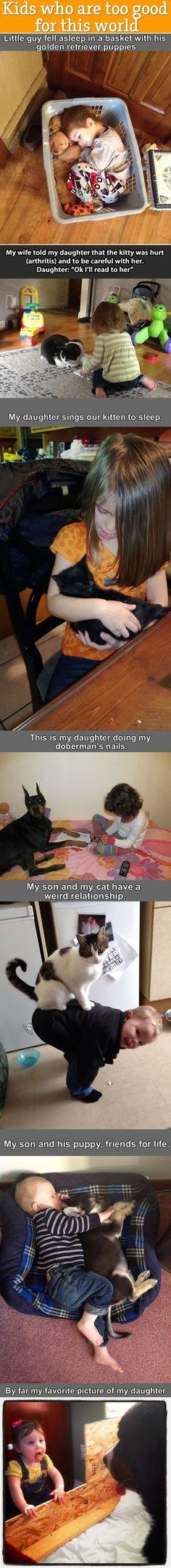 Funny pictures of the day (53 pics)