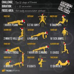 {12 days of Fitness | challenge....accepted!} #fitfluential via @Sam McHardy McHardy Jones Post: Challenges, Weight Loss, Fitness Challenge, Workouts, Healthy, Exercise, Work Out
