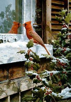 Christmas in Nature. The most beautiful.