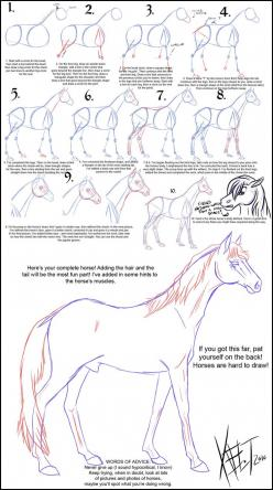 how to draw a horse @Anna Totten Totten Totten Totten Totten Peterson I thought ki would like this!(:: Drawing Tutorials, Horse Drawings, Horses Drawings, Drawing Horses, Animal Drawing, How To Draw Horse, Draw Horses