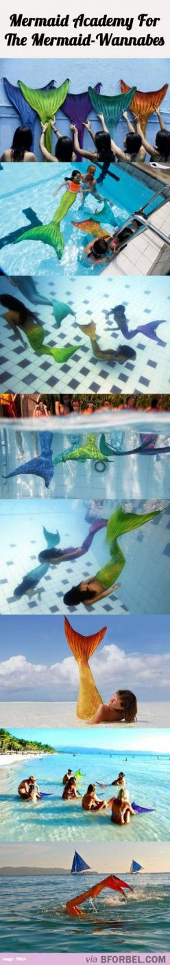 If u have any info on this please comment!!!!!! I want to go. 0-0: Mermaid Academy, Mermaid Tails To Swim In, Bucket List, Mermaid Life, Real Mermaid Tails, Mermaid Wannabes, Awesome Things To Buy, Mermaid Tail To Swim In, Mermaid Sooooo