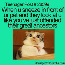 More like you have turned into an alien from The Aliens-franchise. My cat once sneezed on my face and I yelled he was impolite and needed to sneeze into his paw. he looked me like that then....: Relatable Teenager Posts Funny, Hilarious Teenager Post, Fun