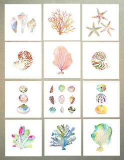 Sea Shell Collection Watercolor Print. Beach by SnoogsAndWilde: Coral Tattoo, Watercolor Print, Sea Shell Tattoo, Watercolor Texture, Watercolor Design, Watercolor Shell, Watercolor Tattoo Wave, Watercolour Tattoo