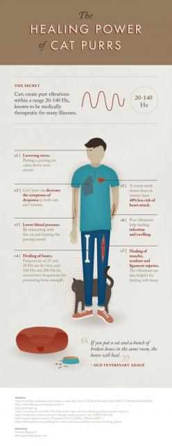 But then, I discovered this when living with a cat Thehealingpowerofcatpurrs_51367583d074d-640x1653: Cats, Healing Power, Catpurrs, Cat Purrs, Pet, Crazy Cat, Health, Animal, Cat Lady