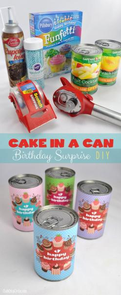 Cake in a Can Birthday Surprise Tutorial... What an awesome idea!  (One of the best surprises I've ever seen - And SO Doable!): Diy Cake, Birthday Surprises, Creative Birthday Gift, Diy Cupcake, Diy Birthday Gift, Kids Cake, Birthday Cake