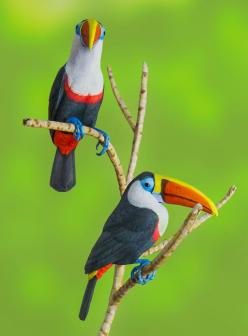 Colorful Toucan: Google, Poultry, Beautiful Birds, Animals Birds, Photo, George Bloise