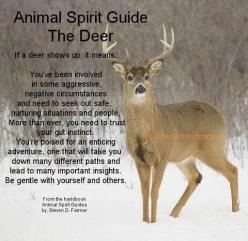 (DEER) Interesting! So Much Truth Behind This... and the incidences of encounters with these creatures! Hmm...: Spirit Guides Totems, Spiritguides, Animal Spirit Guides, Animal Totems, Animal Familiars Guides Totems, Totem Animals, Native American, Deer