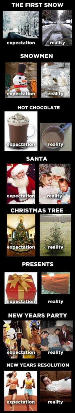 Expectation vs. Reality. (How we soooo thought it would be!): Holiday, Giggle, Truth, Christmas, So True, Funny Stuff, Expectation Reality, Expectation Vs Reality