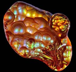 Fire Agate, a variety of chalcedony with an ancient and fiery beginning, is a semi-precious natural gemstone found only in certain areas of northern Mexico and the southwestern United States. Approximately 24-36 million years ago these areas were subjecte