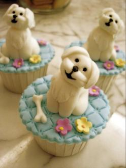 Maltese cupcakes by Cake Over Heels in Singapore: Cup Cakes, Sweet, Dogs, Food, Puppys, Puppy Cupcakes