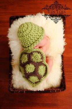 OMG!!!!!!!!!!!!!!!!!!!!!! #diy #crafts #wedding www.BlueRainbowDesign.com: Ideas, Babies, Turtle Baby, Photo, Baby Turtles, Baby Stuff, Kid