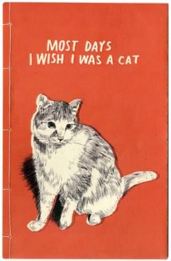 Pinterest: Cats, Days, Quotes, Meow, Truth, I Wish, Crazy Cat, Cat Lady, Animal