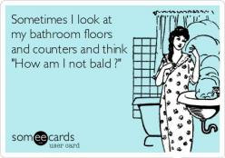 Sometimes I look at my bathroom floors and counters and think 'How am I not bald ?': Someecards Funny, Funny Humor Quotes Real Life, Ecards Humor, Hilarious Ecards Truths, Funny Someecards, Funny Ecards About Life, Funny Ecards Truths, E Cards Fun