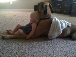This warms my heart. Dogs who love kids, and kids who love dogs.: Animals, Best Friends, Sweet, Dogs, Pets, Puppy, Things, Baby, Kids
