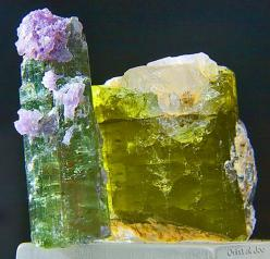 Tourmalines ❦ CHRYSTALS ❦ semi precious stones ❦: Tourmalines Mineral, Gemstones Minerals, Crystals Minerals Gemstones, Gemstones Rocks, Colorful Gemstones, Tourmalines Gemstones, Crystals Gemstones, Photo