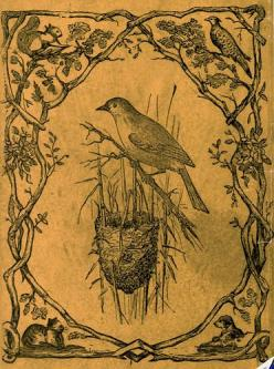 vintage sketch  (I used to try and emulate this type of art--still would enjoy it if I got back into it.) I've move along, now I enjoy 'finding' it on the internet. lol: Vintage Birds, Beautiful Birds, Sketch Bird Nest, White Violets