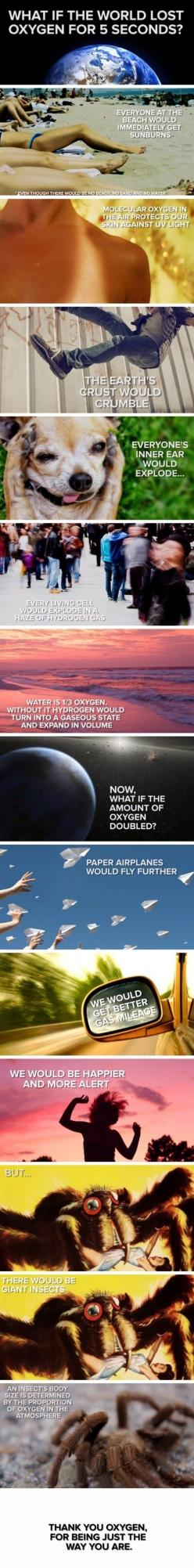 World without oxygen // funny pictures - funny photos - funny images - funny pics - funny quotes - #lol #humor #funnypictures: Pictures Funnypictures, Funny Pics, Oxygen, Funny Pictures, Humor Funnypictures, Funny Images, Funny Quotes, Funnies, Funny Phot