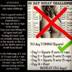 30 day toning challenge.: 30 Day Challenge, Bum Exercise Challenges, Toning Squats, 30 Day Squat Challenge Results, Squat Challenge 30 Day, Toning Challenge, 30 Day Belly Fat Challenge, Squats Challenge, Booty Workouts