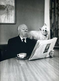 Alfred Hitchcock + a dog. They have the same expression!