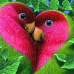 cute birds love | From @GuessQuest collection: Animals, Nature, Color, Lovebird, Beautiful Birds, Photo