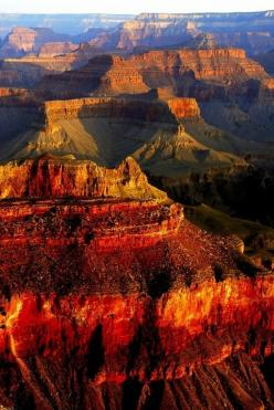 Grand Canyon, AZ, USA For amazing holidays in the USA Click here : http://www.awin1.com/awclick.php?mid=2204&id=119939: Bucket List, Nature, Grandcanyon, Beautiful Place, National Parks, Grand Canyon Arizona, Travel, Usa