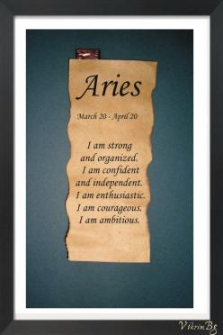 I am an Aries....just not sure about the organized part lol: Zodiac Parchment, Zodiac Signs, Books, Quotes, I M, Astrological Quote, Parchment Astrological, Cancer