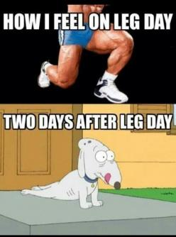 Leg day: Fitness Humor, Gym Humor, Funny Stuff, Healthy, Funny Fitness, Fitness Motivation, Fitness Quotes, Workout, Legs Day