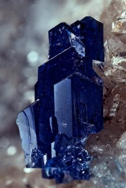 Linarite / Mineral Friends <3: Gemstones, Crystals Gems, Rocks Minerals, Blue, Stones Crystals, Reef Mine, Graham County