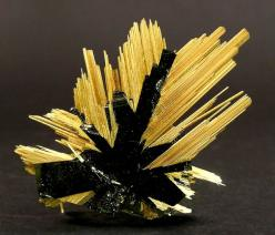 Rutile and Hematite :: The crystals of Rutile, which are brilliant yellow and have golden reflections, have grown epitaxially on tabular Hematite. The terminations of the Rutile have very well defined faces, which is not so common with this type of specim