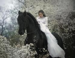 Something about this picture deeply appeals to me... even though I don't like children. At all.: Picture, Animals, Girl, Horses, Wedding, Beautiful, Fairytale