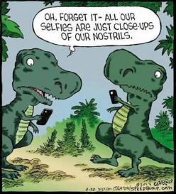 t rex funny pictures | Rex can't catch a break... - The Meta Picture: Giggle, Dinosaur, Poor T Rex, Trex, Funny Stuff, Funnies, Humor, T Rex Selfies