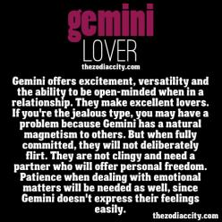 This is my sign, but I'm clearly not like this, right honey?...Honey?: Gemini Lovers, Gemini Me, Gemini Quotes Truths, Gemini Hd, Gemini Baby, Astrology Gemini, Gemini Pictures, Gemini Both