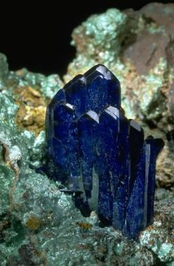 Azurite crystals with Malachite from the National Mineral Collection.: Crystals Gems Minerals Rocks, Gems Minerals Crystals Rocks, Minerals Crystals Gems, Gems Crystals Rocks Minerals, Crystals Minerals Rocks, National Mineral, Mineral Collection